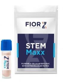 STEMMaxx